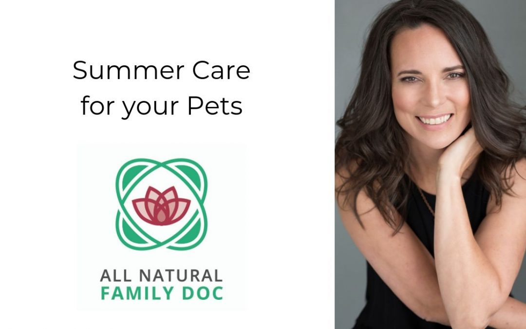 Summer Care for your Pets
