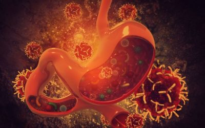 What to do (and how to Rehab your Gut) when Diarrhea Hits