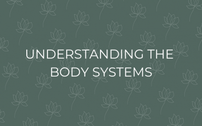 Understanding the Body Systems